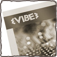 Vibe Corporate Identity Project Thumbnail